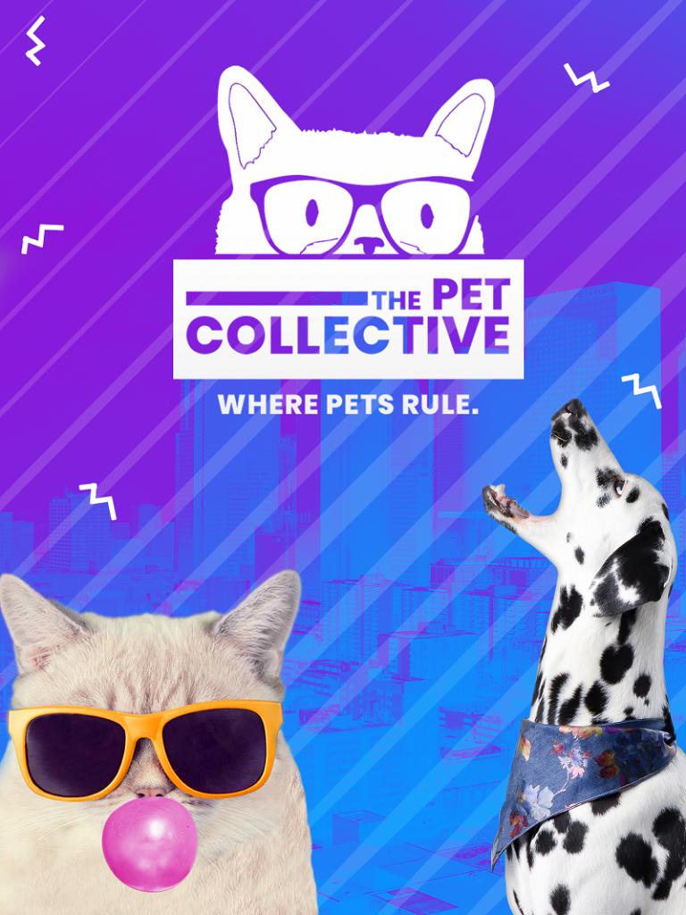 Vodafone TV'den heyecan verici 3 yeni içerik 1550213933 The Pet Collective 1 768x1024